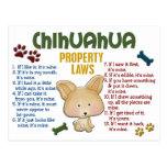 Chihuahua Property Laws 4