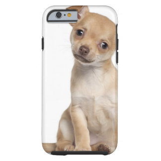 Chihuahua puppy (2 months old) tough iPhone 6 case