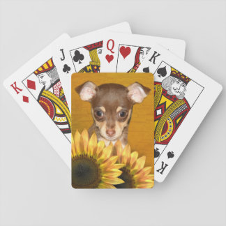 Chihuahua puppy and sunflowers poker deck