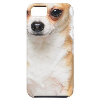 Chihuahua Puppy iPhone 5 Covers