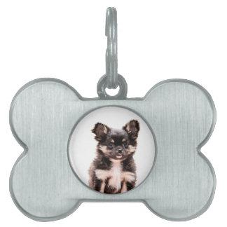 Chihuahua Puppy Dog Pet Name Tag