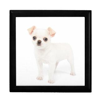 Chihuahua puppy keepsake box