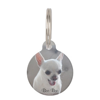 Chihuahua Round Small Pet Tag Add Photo