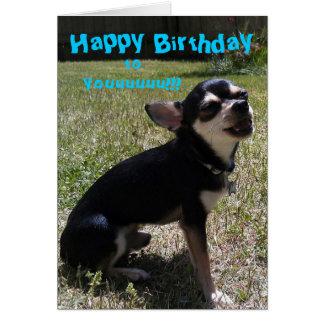 Chihuahua singing Happy Birthday! Card