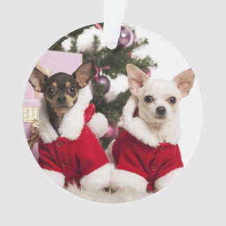 Chihuahua Sitting And Wearing A Christmas Suit Ornament