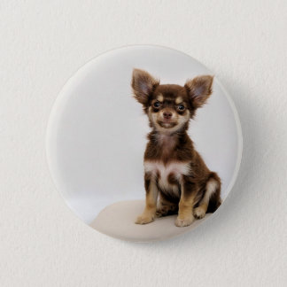 Chihuahua Small Dog 2 Inch Round Button
