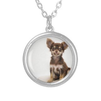 Chihuahua Small Dog Silver Plated Necklace