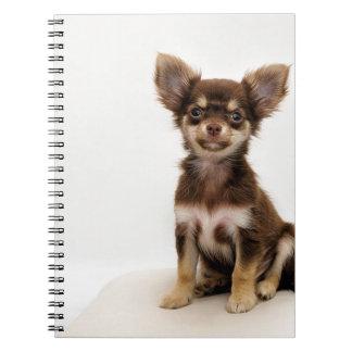 Chihuahua Small Dog Spiral Notebook