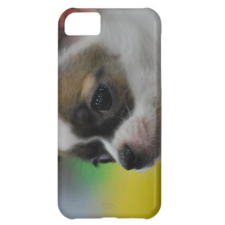 Chihuahua Star Cover For iPhone 5C