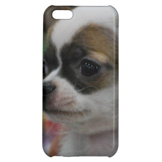 Chihuahua Star iPhone 5C Covers