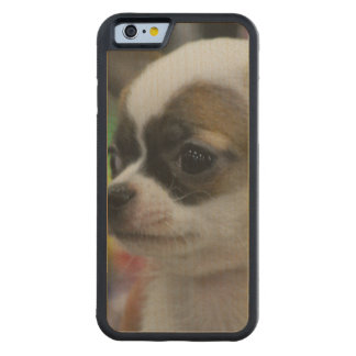 Chihuahua Star Carved® Maple iPhone 6 Bumper