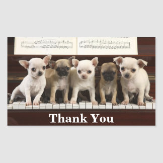 Chihuahua Thank You Puppy Dogs ( Chewawa Chiwawa )