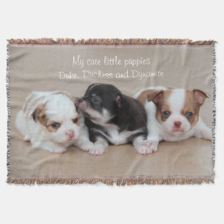 Chihuahua Throw Blanket My Cute Little Puppies