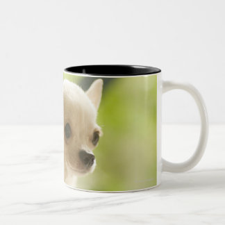Chihuahua Two-Tone Coffee Mug