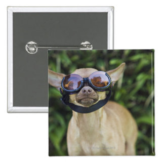 Chihuahua wearing goggles 2 inch square button