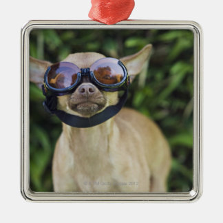 Chihuahua wearing goggles Silver-Colored square ornament