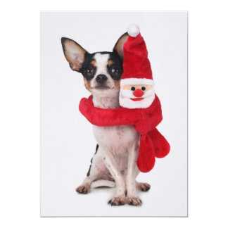 "Chihuahua with Santa Claus doll 5"" X 7"" Invitation Card"