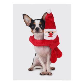 Chihuahua with Santa Claus doll Postcard