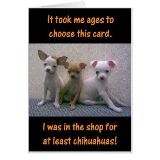 Chihuahuas Greeting Card
