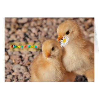 Children birthday card with tiny chicks