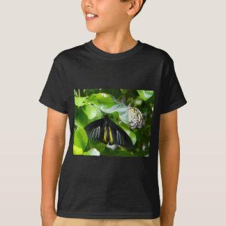 Children's butterflies  shirt