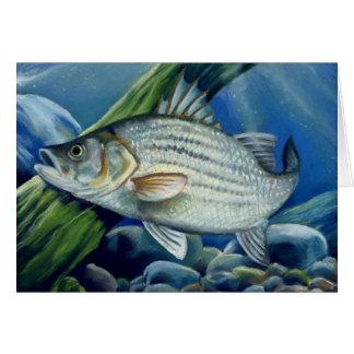 Children's Winning Artwork: white bass Card