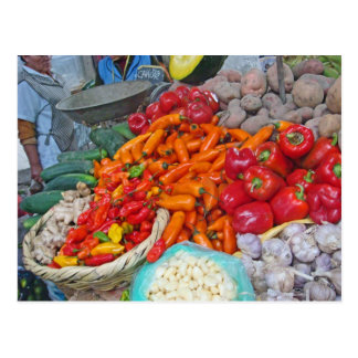 Chiles and More Postcard