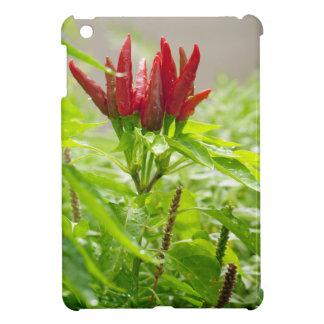 Chili flower iPad mini cases