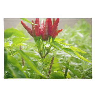 Chili flower placemat