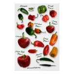 Chili Varieties Wall Art