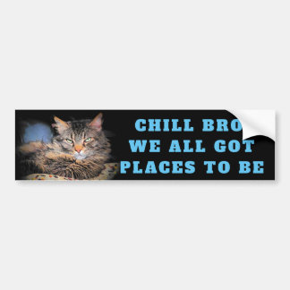 Chill Bro, We All Got Places To Be Cat Meme Bumper Sticker