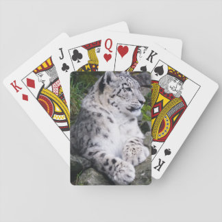 Chilled Out Snow Leopard Playing Cards