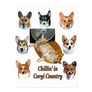 Chillin' in  Corgi Country Postcard