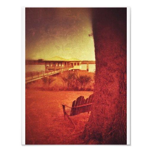 Chillin' on the Isle of Hope Photo Art