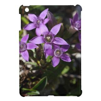 Chiltern gentian (Gentianella germanica) iPad Mini Cases