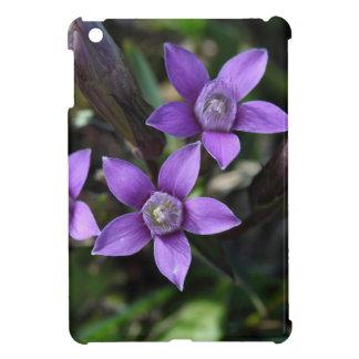 Chiltern gentian (Gentianella germanica) iPad Mini Covers