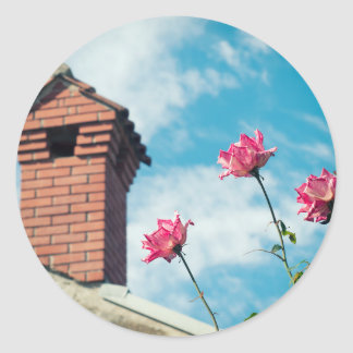 Chimney and wild roses classic round sticker