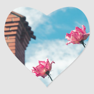 Chimney and wild roses heart sticker