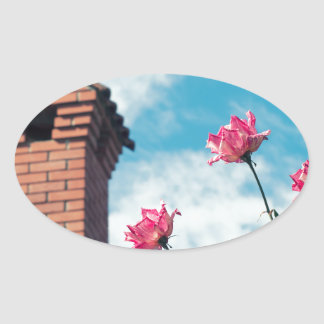Chimney and wild roses oval sticker