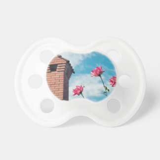 Chimney and wild roses pacifier