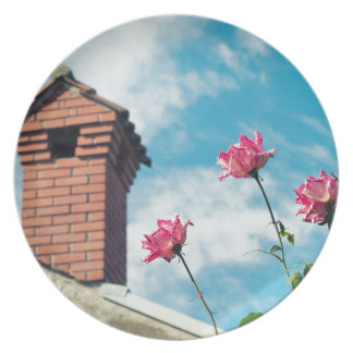 Chimney and wild roses party plate
