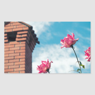 Chimney and wild roses sticker
