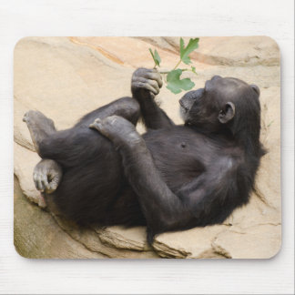 Chimp relaxing mouse pad