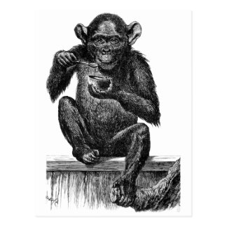 Chimp with Soup Postcard