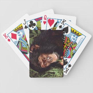 Chimpansee Poker Deck