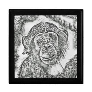 Chimpanzee 20161101 gift box