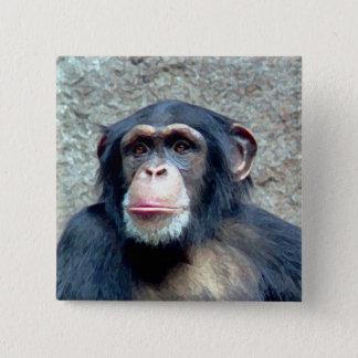 Chimpanzee 2 Inch Square Button