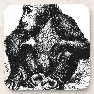 chimpanzee drink coaster