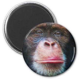 CHIMPANZEE FACE Primate Wildlife Art Magnet