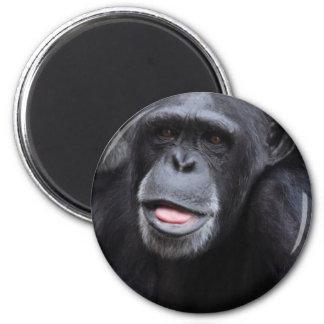 Chimpanzee Fun 2 Inch Round Magnet
